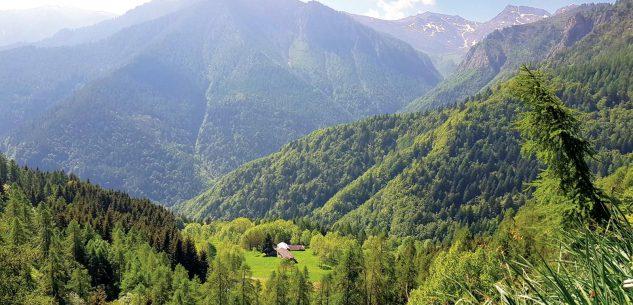 La Guida - Escursioni da Celle Macra, Certosa di Pesio e Melle