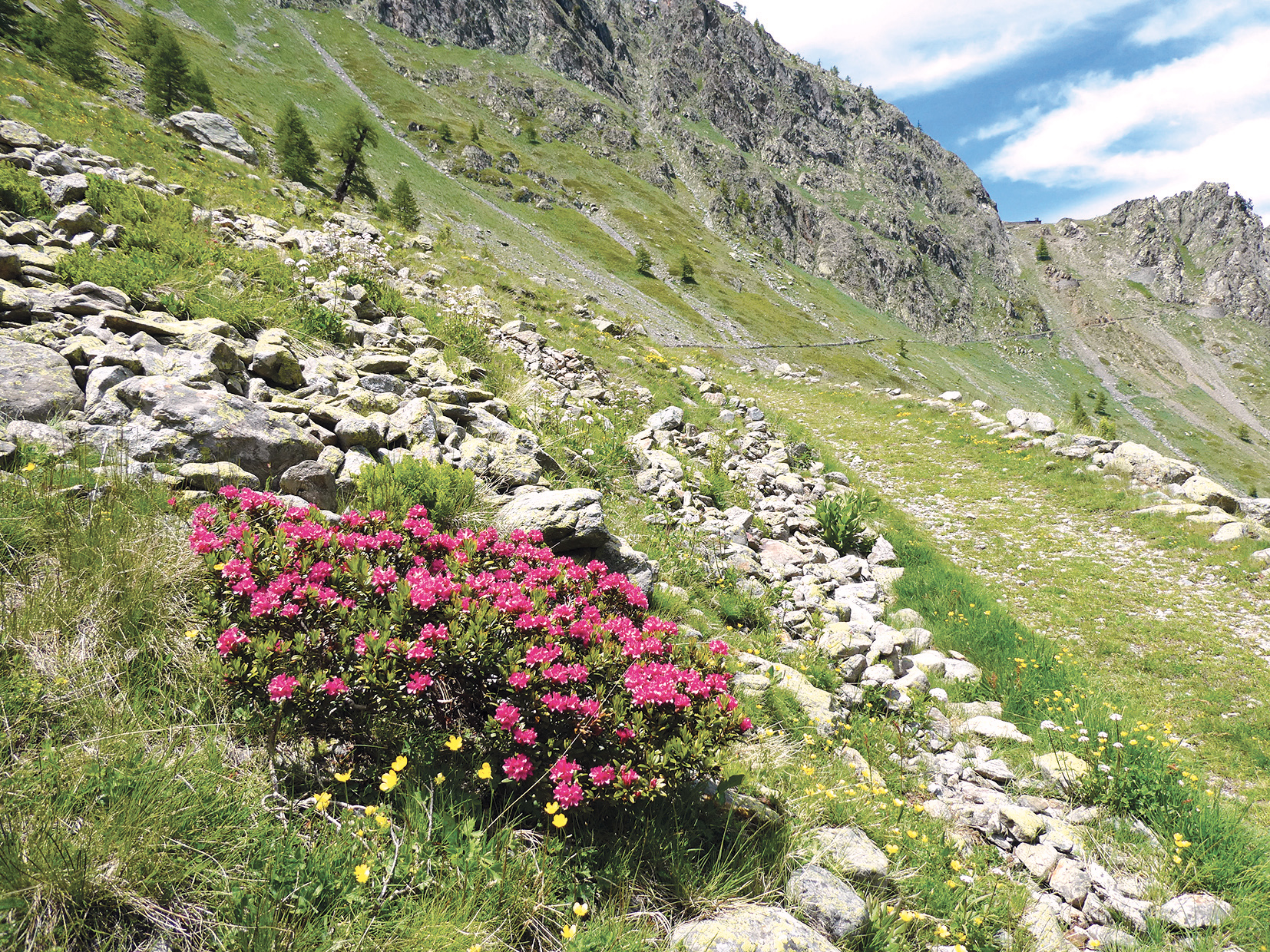 Passo sottano Scolettas - Valle Stura - Paolo Laguzzi 2020