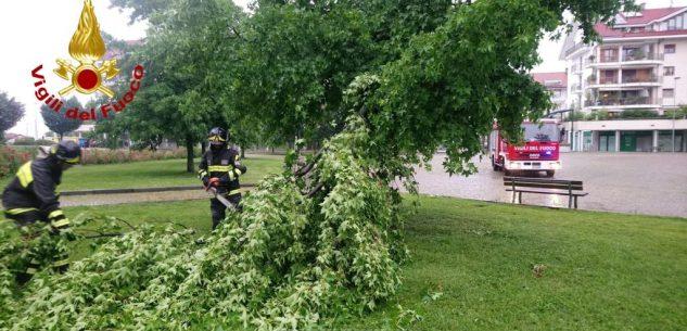 La Guida - Vento e forti piogge, 34 interventi dei Vigili del fuoco