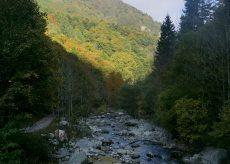 La Guida - A passeggio tra cervi, boschi e cascate