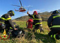 La Guida - Vigili del fuoco salvano una mucca a Crissolo