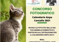 La Guida - Concorso fotografico per il calendario animali Anpa Centallo 2021