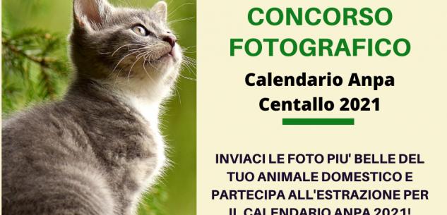 Concorso fotografico per il calendario animali Anpa Centallo 2021