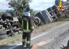 La Guida - Camion carico di maiali si ribalta lungo la provinciale per Barolo