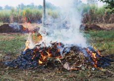 La Guida - A Caraglio e Bernezzo altri 15 giorni per gli abbruciamenti vegetali