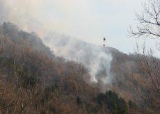 La Guida - Pulizia dei boschi, foglie e vegetali da bruciare: ecco le regole