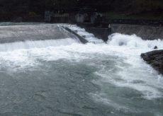 """La Guida - """"Scale di rimonta"""" per i pesci nei torrenti della Granda"""