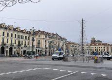 La Guida - Due alberi di luce in centro a Cuneo