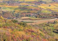 La Guida - I paesaggi vitivinicoli del Piemonte: le Langhe e il Roero (video)