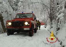La Guida - Rimozione degli alberi crollati sulle strade per la neve