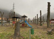 """La Guida - Il """"no"""" di Legambiente alla capitozzatura degli alberi"""
