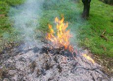 La Guida - Da domani a Melle si può bruciare materiale vegetale