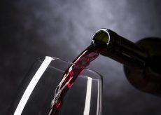La Guida - Buon vino fa buon sangue