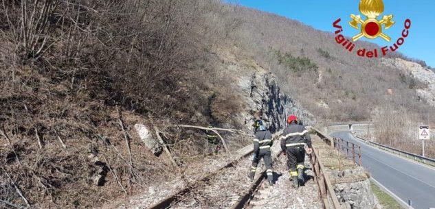 La Guida - Alberi caduti per il forte vento sulla ferrovia Ceva-Ormea