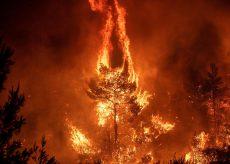 La Guida - Stato di massima pericolosità per gli incendi boschivi