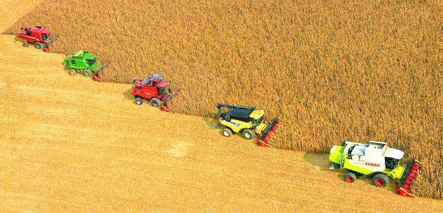La Guida - Dalla terra all'azienda, una filiera firmata e garantita dai veri agricoltori
