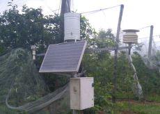 La Guida - Agricoltura, capannine non solo per la pioggia e le temperature