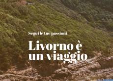 La Guida - La monregalese Itur gestirà l'ufficio turistico di Livorno