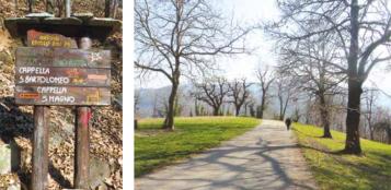 La Guida - Da San Giuliano di Roccabruna a Cima delle Piastre, gite in armonia con la natura