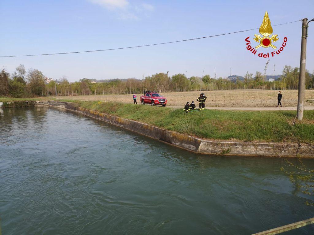 Vigili del Fuoco soccorrono capriolo su canale a Roddi