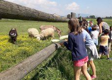 La Guida - Alla scoperta delle fattorie didattiche a contatto con la natura e gli animali