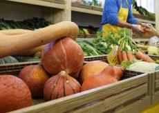 La Guida - L'acquisto diretto dei prodotti locali riduce gli sprechi alimentari del 60%