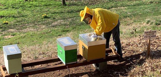La Guida - Gli orti e le api solidali, opportunità per far ricredere le persone in se stesse
