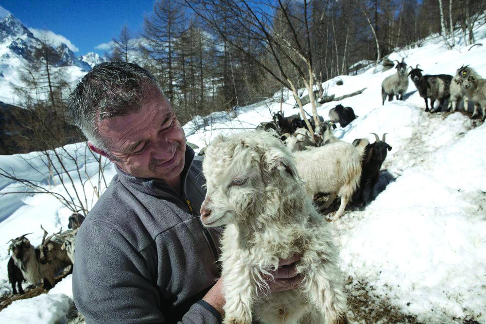 Ostana - L'allevatore Roberto Miretto-maggio-2021.