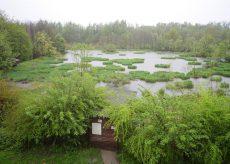 La Guida - Alla riserva naturale di Crava-Morozzo due visite guidate per mamme