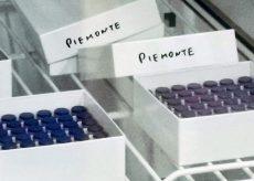 La Guida - Covid, 122 nuovi contagiati in provincia di Cuneo