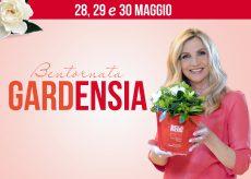 La Guida - Una gardenia per la ricerca dell'Aism sulla sclerosi multipla