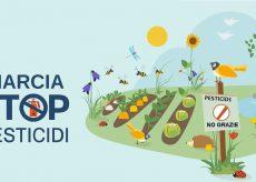 La Guida - Le associazioni ambientaliste cuneesi contro i pesticidi