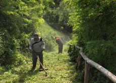 La Guida - Volontari della Pro Loco Castello puliscono le ripe a Dogliani