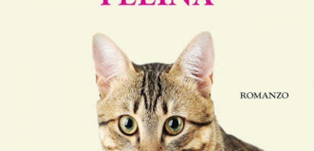 La Guida - Vita da gatti