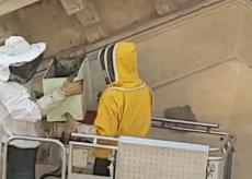 La Guida - Vespaio al Padisport di Cuneo, intervengono i vigili del fuoco (video)