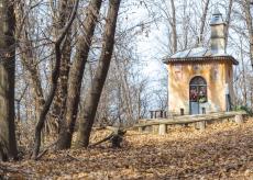 La Guida - Una camminata sulle dolci colline di Peveragno