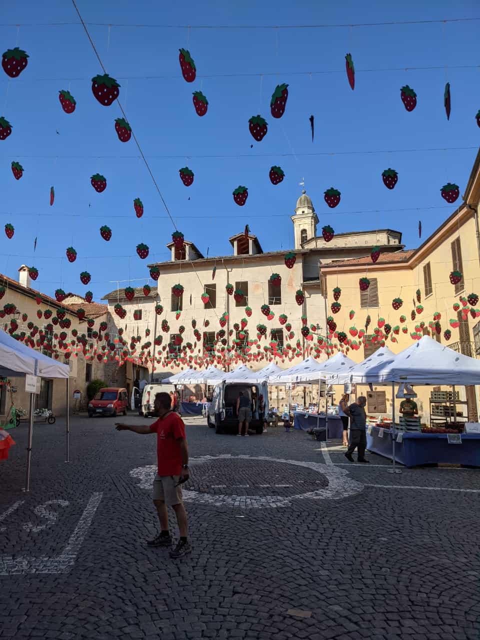 Peveragno - Mercato della fragola domenica 13 giugno 2021