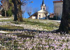 La Guida - Montaldo di Mondovì, il fascino ameno di luoghi antichi