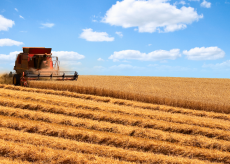 La Guida - Lo spopolamento delle aree rurali in Europa