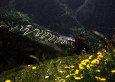 La Guida - Riaperta vecchia strada del Colle di Tenda