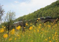 La Guida - I Comitati di difesa della ferrovia Cuneo-Ventimiglia-Nizza chiedono 12 treni sulla linea