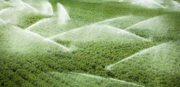 La Guida - Agricoltura e consumo di acqua, è il momento di cambiare