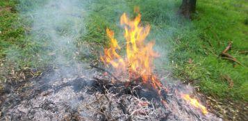La Guida - Vietato bruciare rami, foglie e sterpaglie