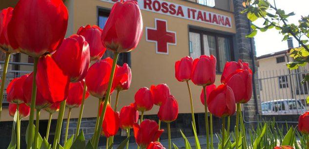 La Guida - Attività ricreative per ragazzi disabili alla Croce Rossa di Melle