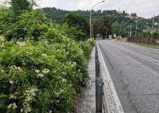La Guida - Borgo dimentica il confine con Roccavione