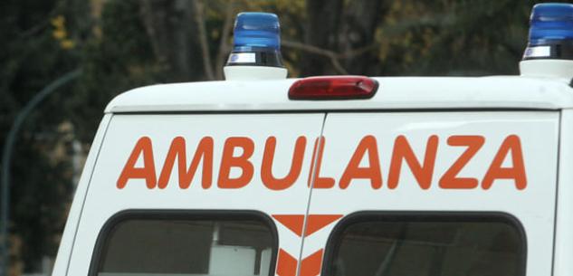 La Guida - Cade da un albero a Robilante: è grave in ospedale