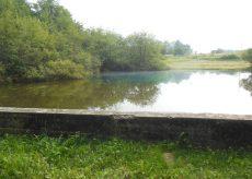 La Guida - Beinette, passeggiata lungo i sentieri dell'acqua