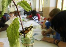La Guida - Laboratorio di scrittura creativa a Roccavione