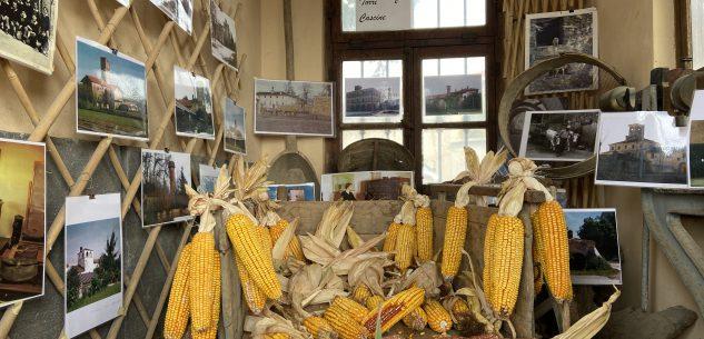 La Guida - Autunno, scuola e agricoltura d'altri tempi a Passatore
