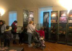 """La Guida - """"Archeostar"""", il passato va di moda al Museo Civico"""